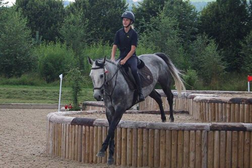 Equestrian centre specialising in competitive show jumping for international students