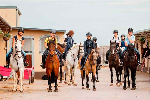 Horse riding and English camps in Ireland