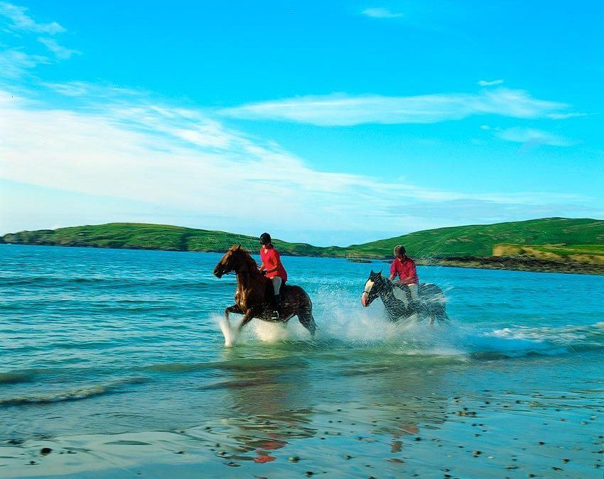 Horseback-riding-courses-for adults-Ireland