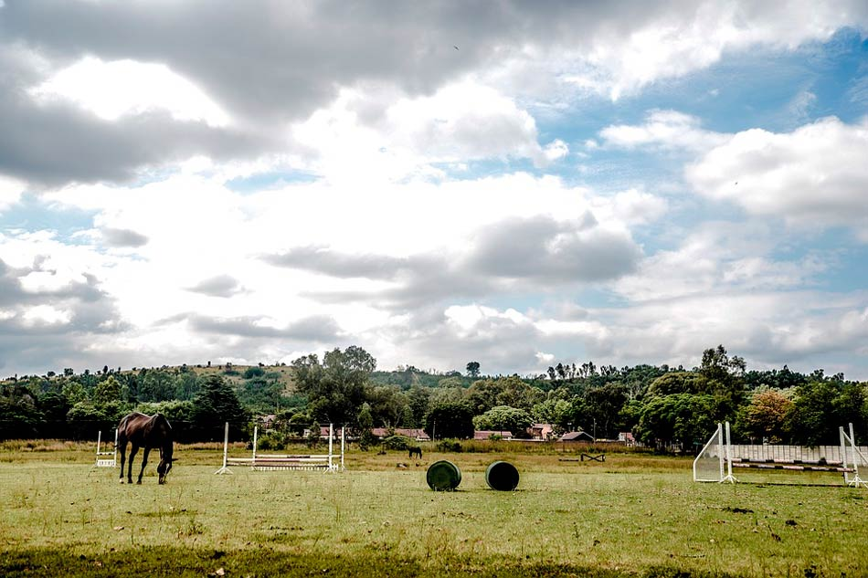 Horse Riding and English Camp Ireland facilities