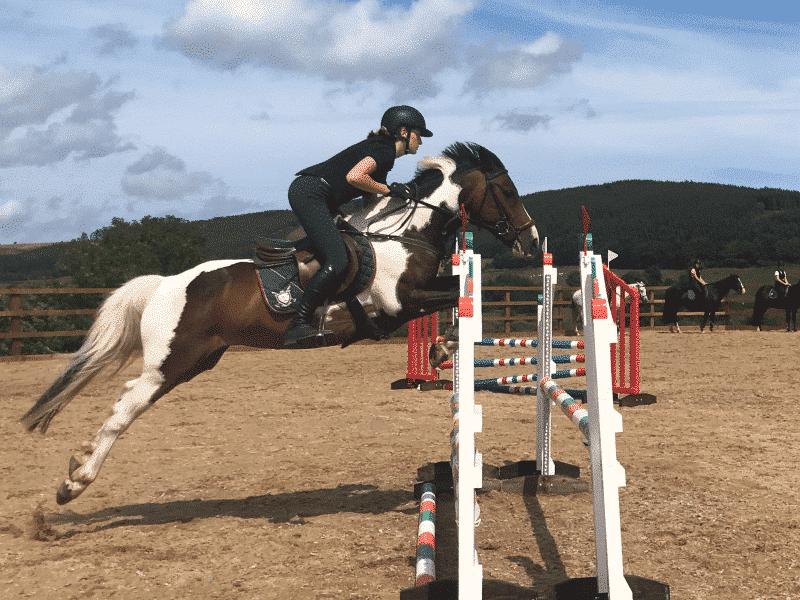 facilities at Specialized Competitive Show Jumping Course Ireland