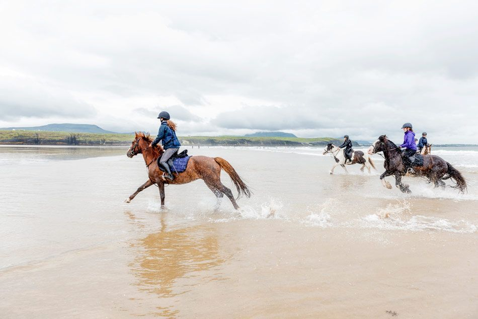 equestrian course in ireland-young adults