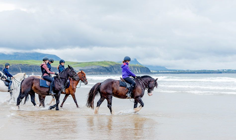 equestrian travels to ireland