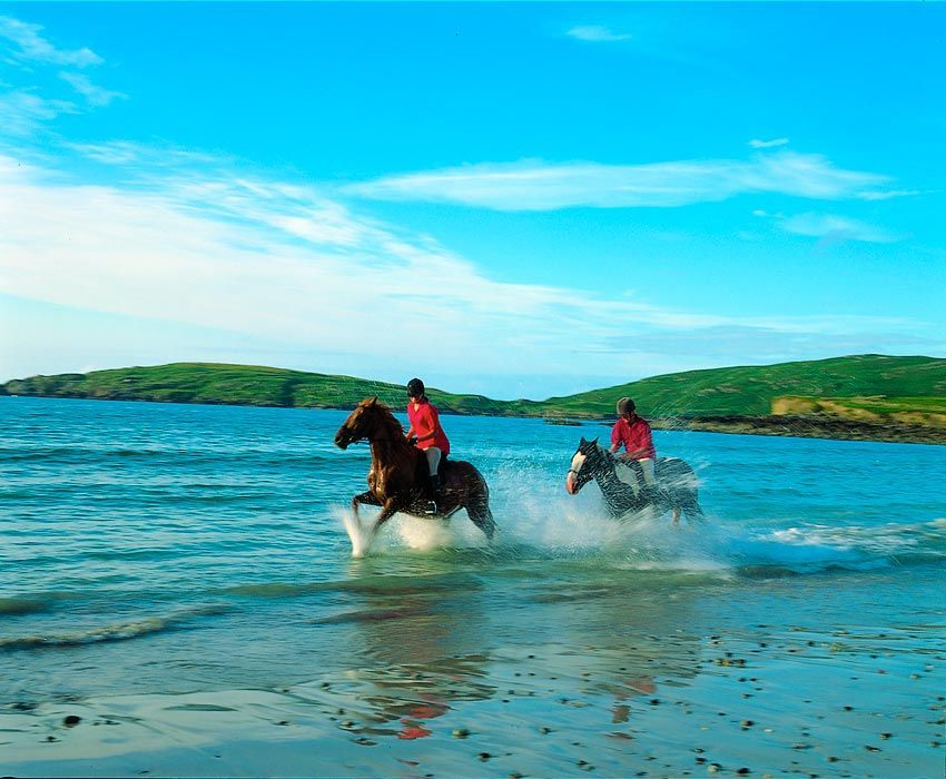 excursion at young-adult-equestrian-camps-ireland