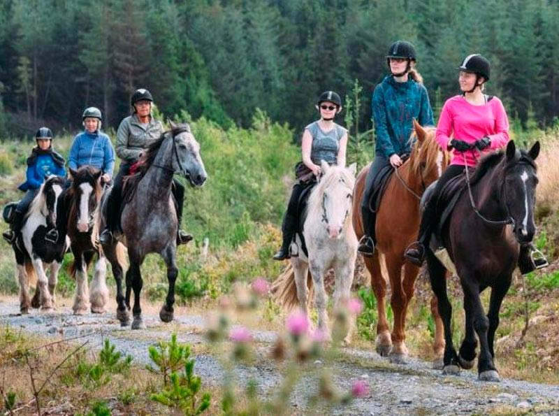 excursions at equestrian horse riding hacks ireland