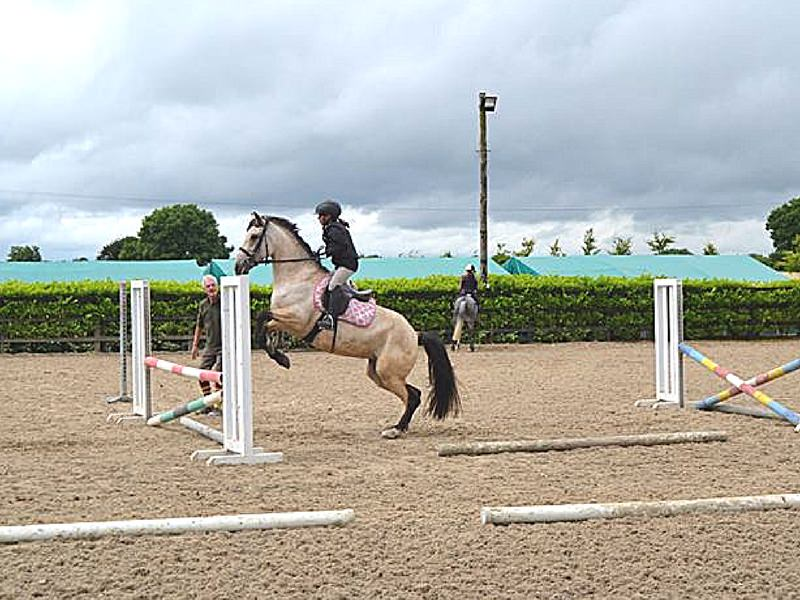 jump lessons at Intensive Equestrian Camp in Ireland