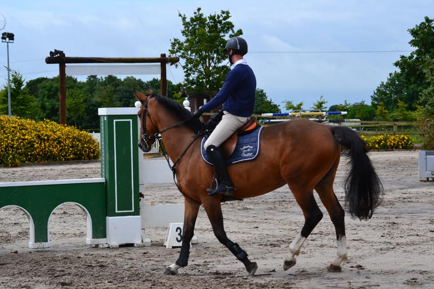 parctice at facilities for adult equestrian horse riding in ireland