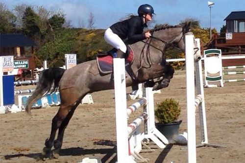 specialized competitive show jumping course ireland program