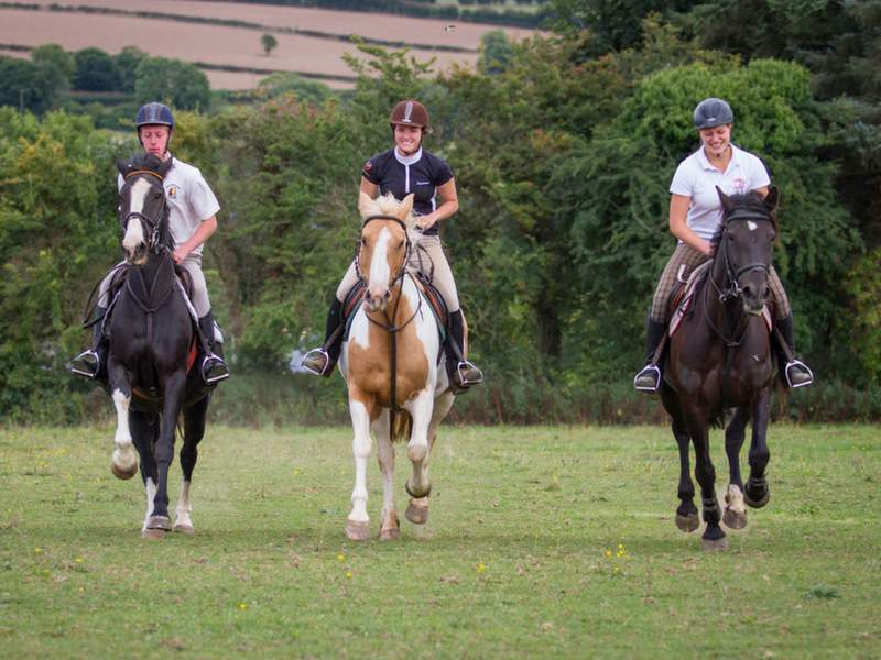 students riding at adult equestrian horse riding in ireland