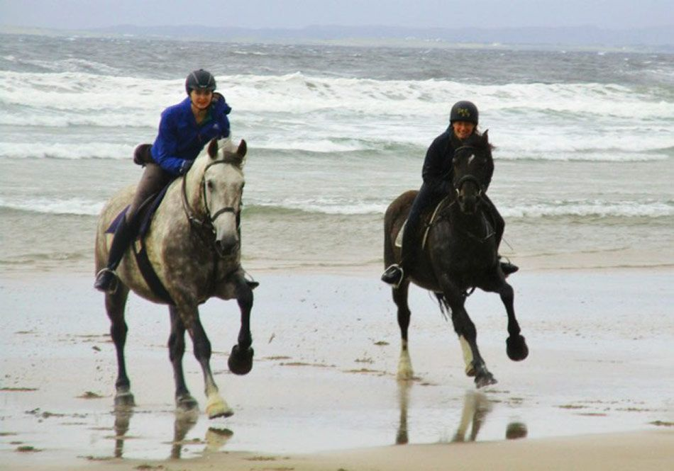 young adult equestrian camps ireland