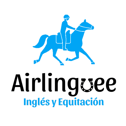 Airlinguee - horse riding and english camps Ireland